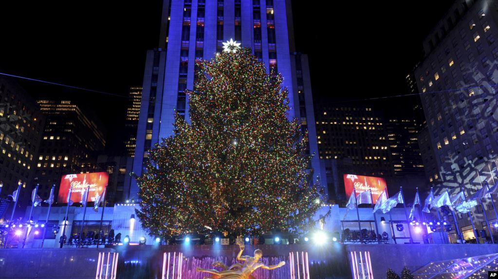 """""""ต้นคริสต์มาสรีไซเคิล"""" ตอบแทนสังคมอเมริกัน"""