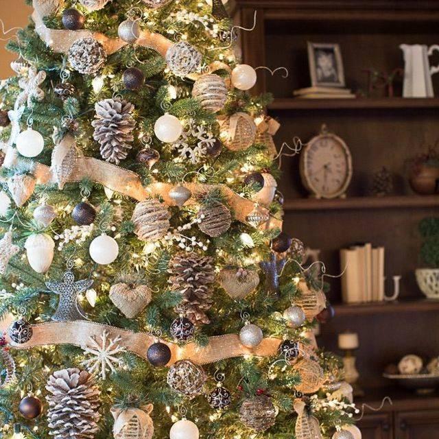 10 ต้นไม้แต่งบ้านในวันคริสต์มาส