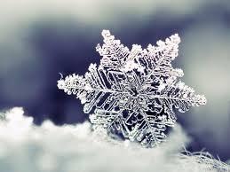 รู้ไหม หิมะ เกิดขึ้นมาได้อย่างไร