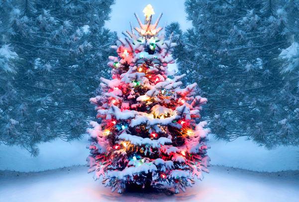 รู้หรือไม วันคริสต์มาสเคยถูกยกเลิก